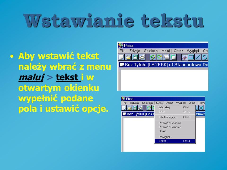 Wstawianie tekstu Aby wstawić tekst należy wbrać z menu maluj > tekst i w otwartym okienku wypełnić podane pola i ustawić opcje.