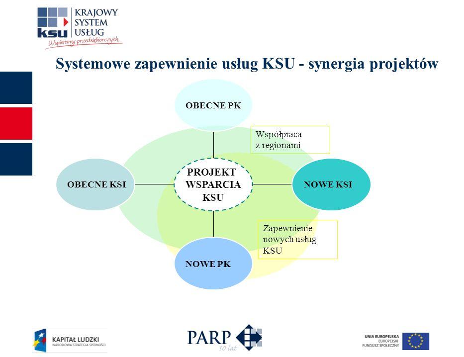 Systemowe zapewnienie usług KSU - synergia projektów