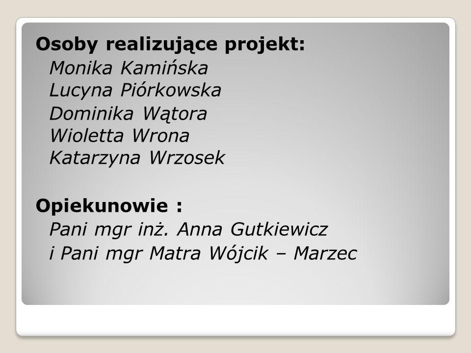 Osoby realizujące projekt: Monika Kamińska Lucyna Piórkowska Dominika Wątora Wioletta Wrona Katarzyna Wrzosek Opiekunowie : Pani mgr inż.