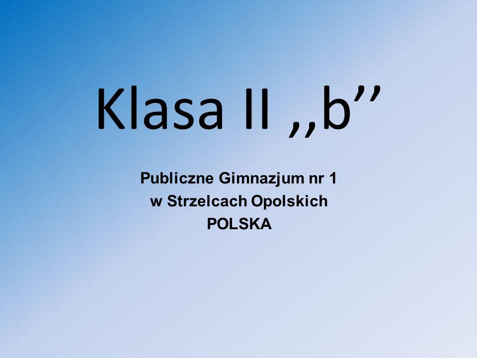 Publiczne Gimnazjum nr 1 w Strzelcach Opolskich