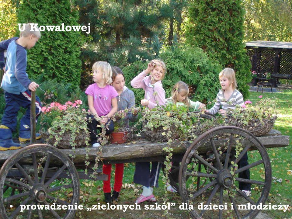 """U Kowalowej prowadzenie """"zielonych szkół dla dzieci i młodzieży"""