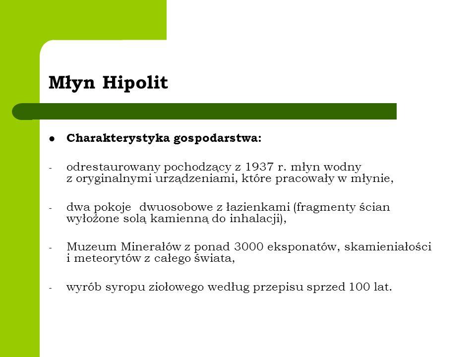 Młyn Hipolit Charakterystyka gospodarstwa: