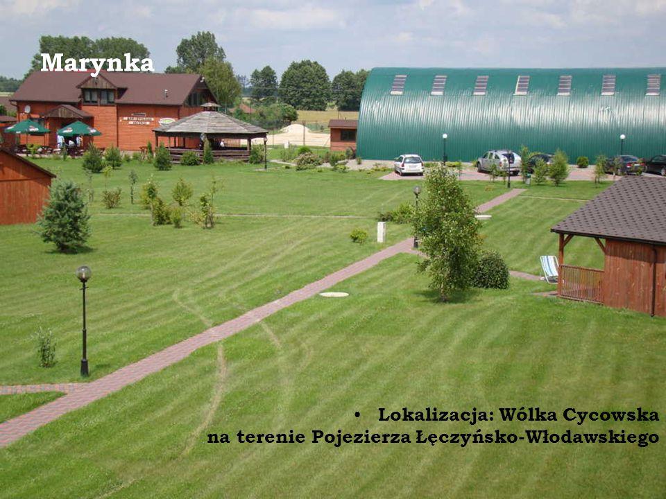 Marynka Lokalizacja: Wólka Cycowska na terenie Pojezierza Łęczyńsko-Włodawskiego