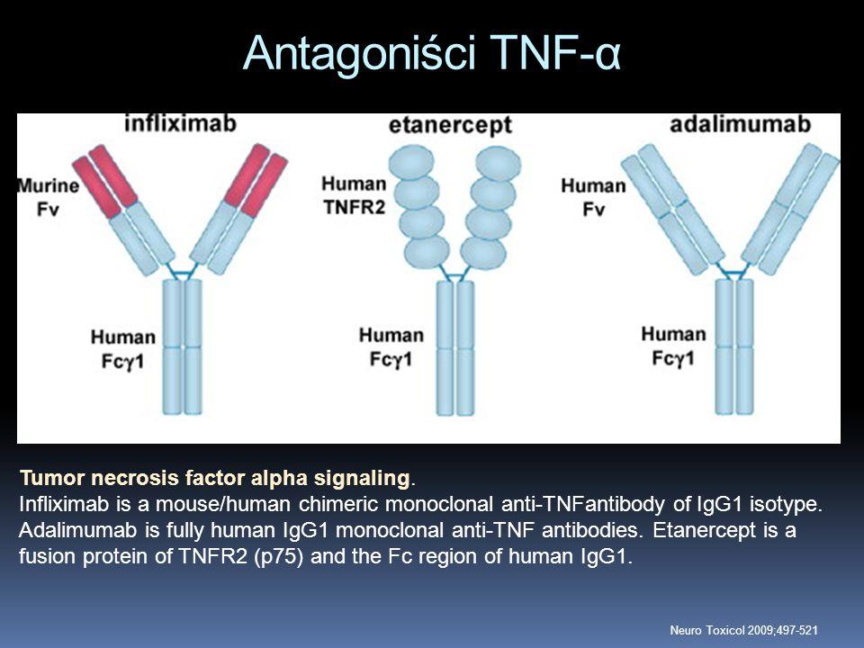 Antagoniści TNF-α Tumor necrosis factor alpha signaling.