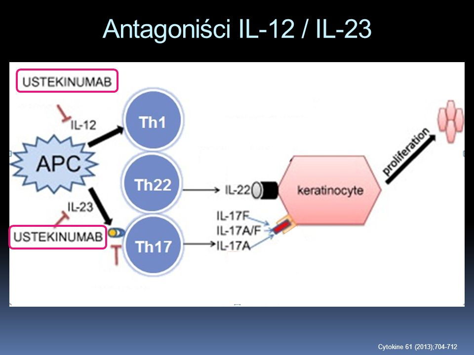 Antagoniści IL-12 / IL-23 Cytokine 61 (2013);704-712