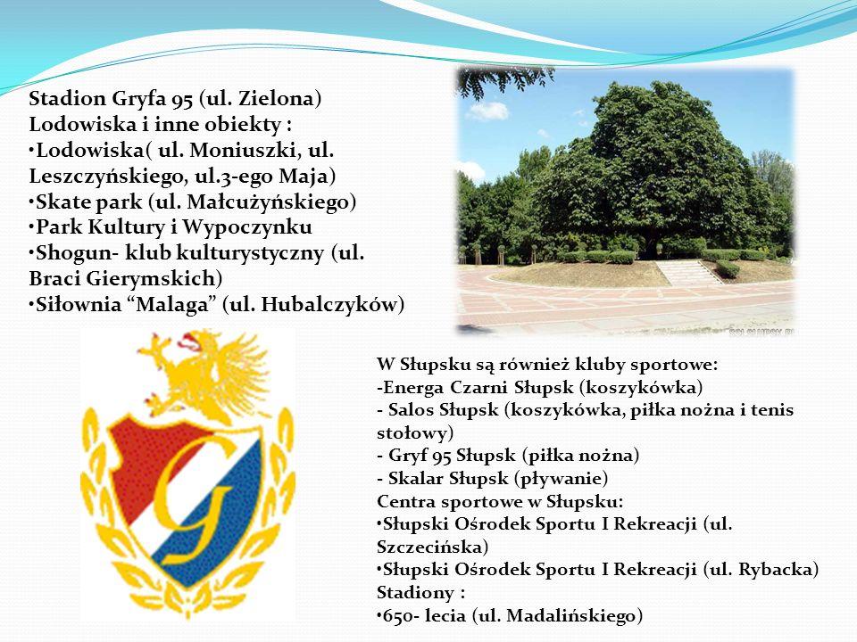 Stadion Gryfa 95 (ul. Zielona) Lodowiska i inne obiekty :