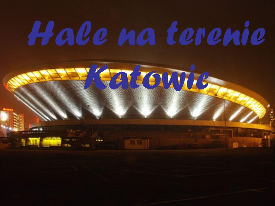 Hale na terenie Katowic