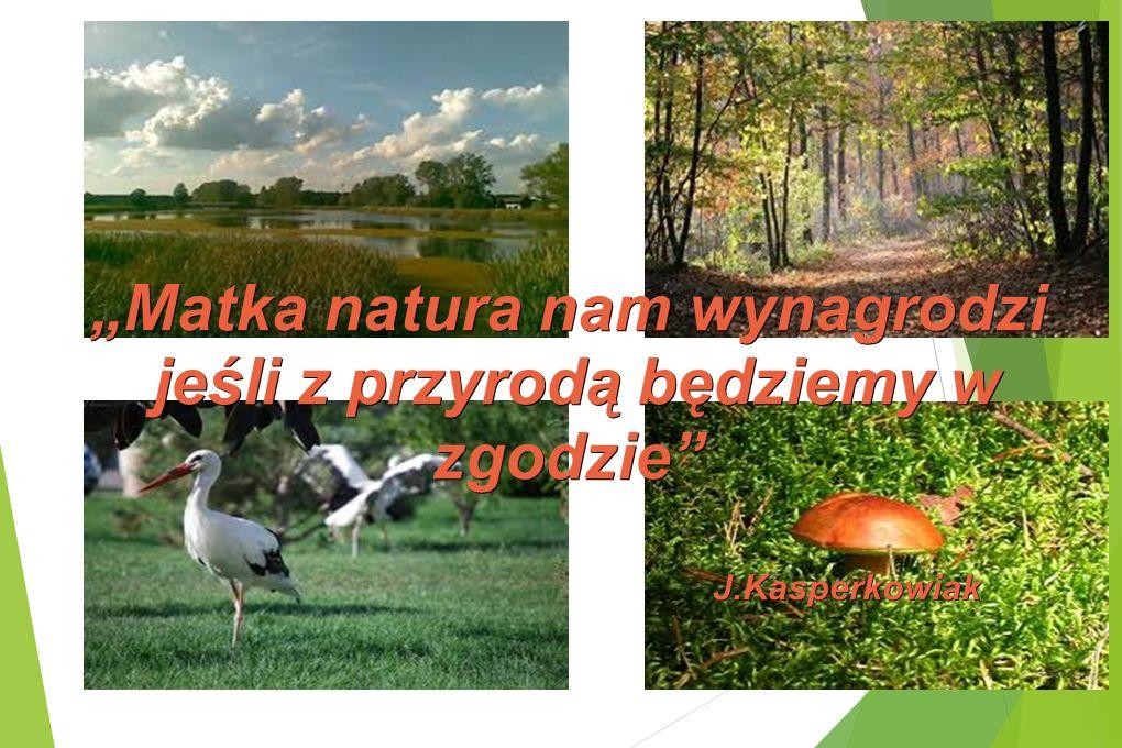 """""""Matka natura nam wynagrodzi jeśli z przyrodą będziemy w zgodzie"""