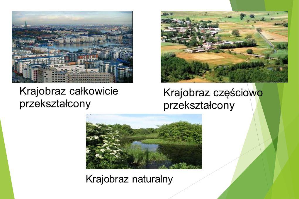 Krajobraz całkowicie przekształcony Krajobraz częściowo przekształcony