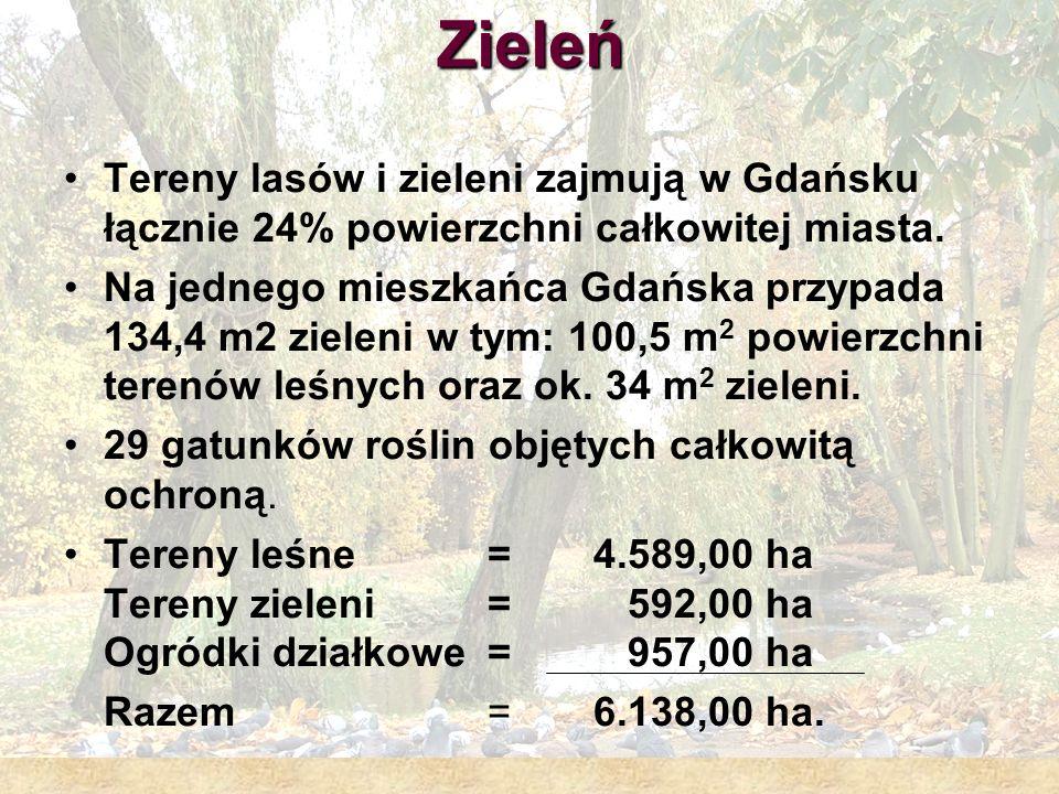 Zieleń Tereny lasów i zieleni zajmują w Gdańsku łącznie 24% powierzchni całkowitej miasta.