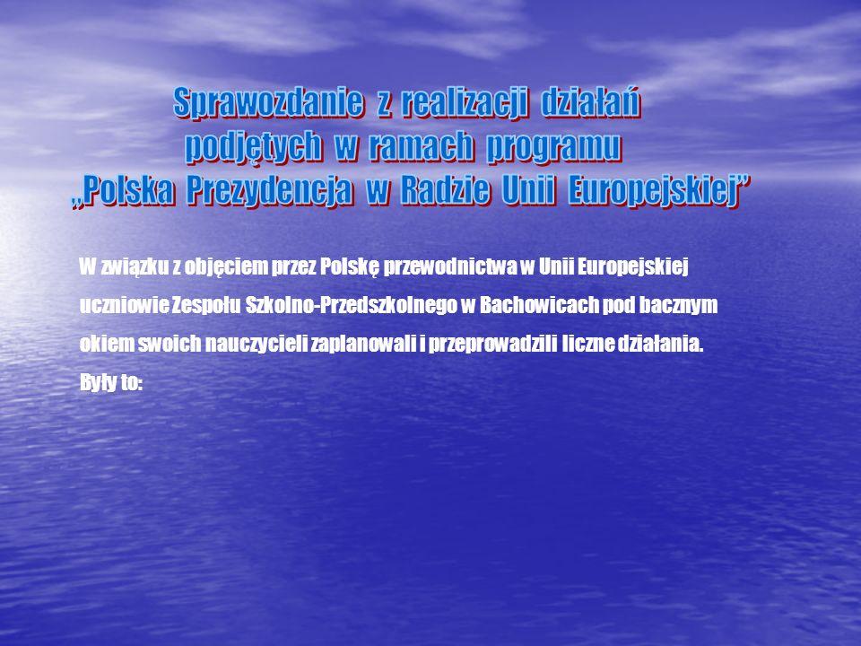 Sprawozdanie z realizacji działań podjętych w ramach programu