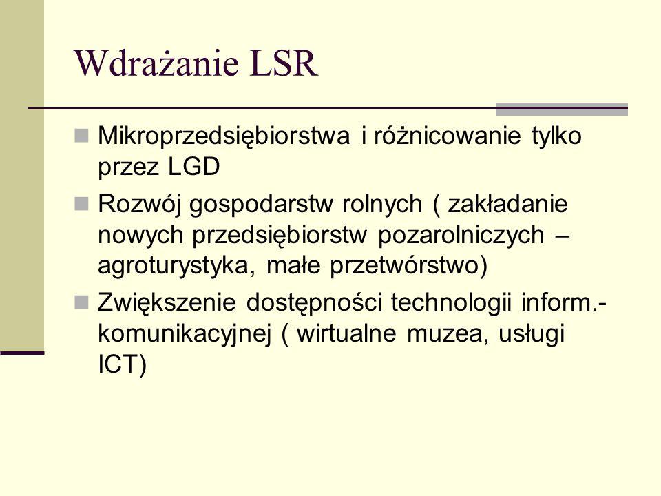 Wdrażanie LSR Mikroprzedsiębiorstwa i różnicowanie tylko przez LGD