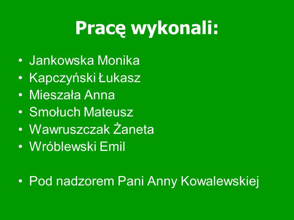 Pracę wykonali: Jankowska Monika Kapczyński Łukasz Mieszała Anna