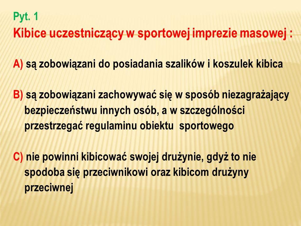 Kibice uczestniczący w sportowej imprezie masowej :