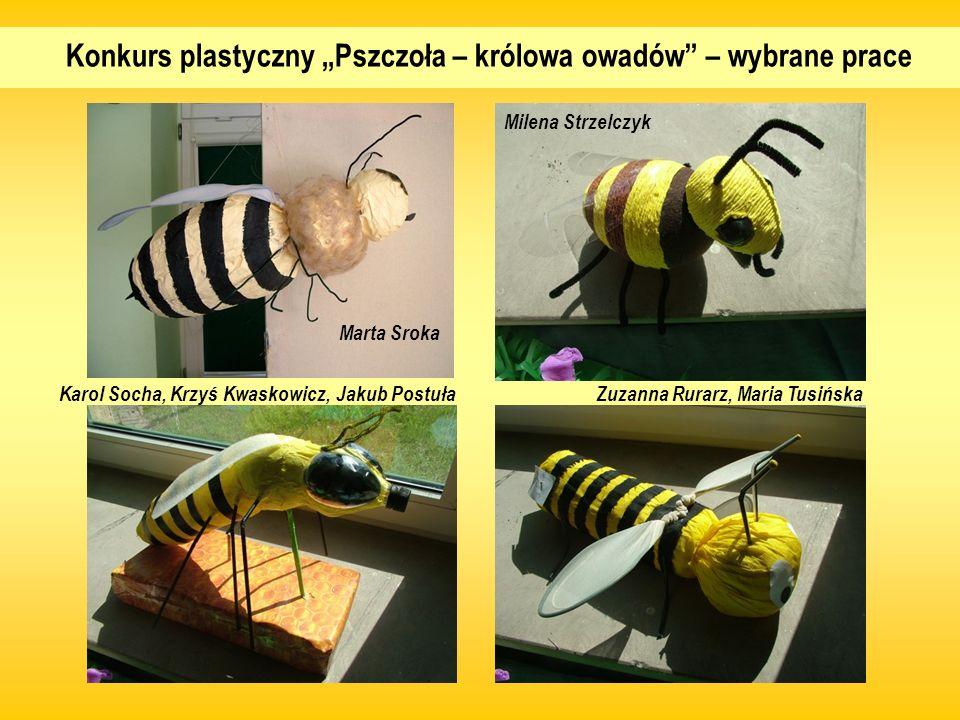 """Konkurs plastyczny """"Pszczoła – królowa owadów – wybrane prace"""