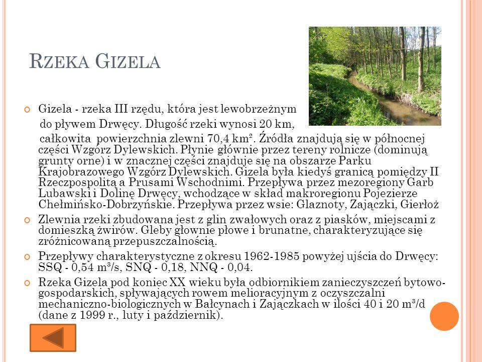 Rzeka Gizela Gizela - rzeka III rzędu, która jest lewobrzeżnym