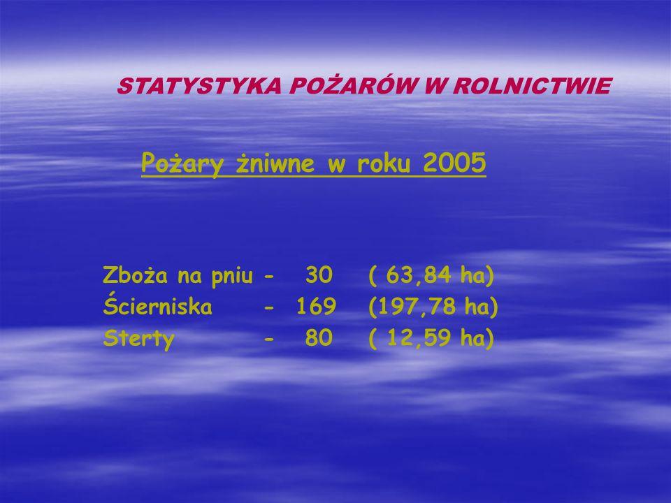 Pożary żniwne w roku 2005 STATYSTYKA POŻARÓW W ROLNICTWIE