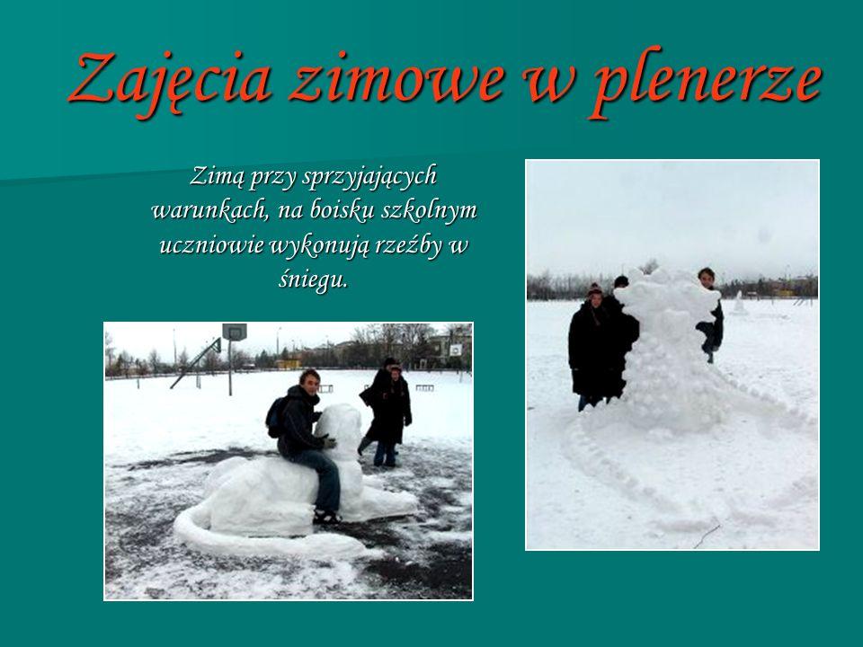 Zajęcia zimowe w plenerze