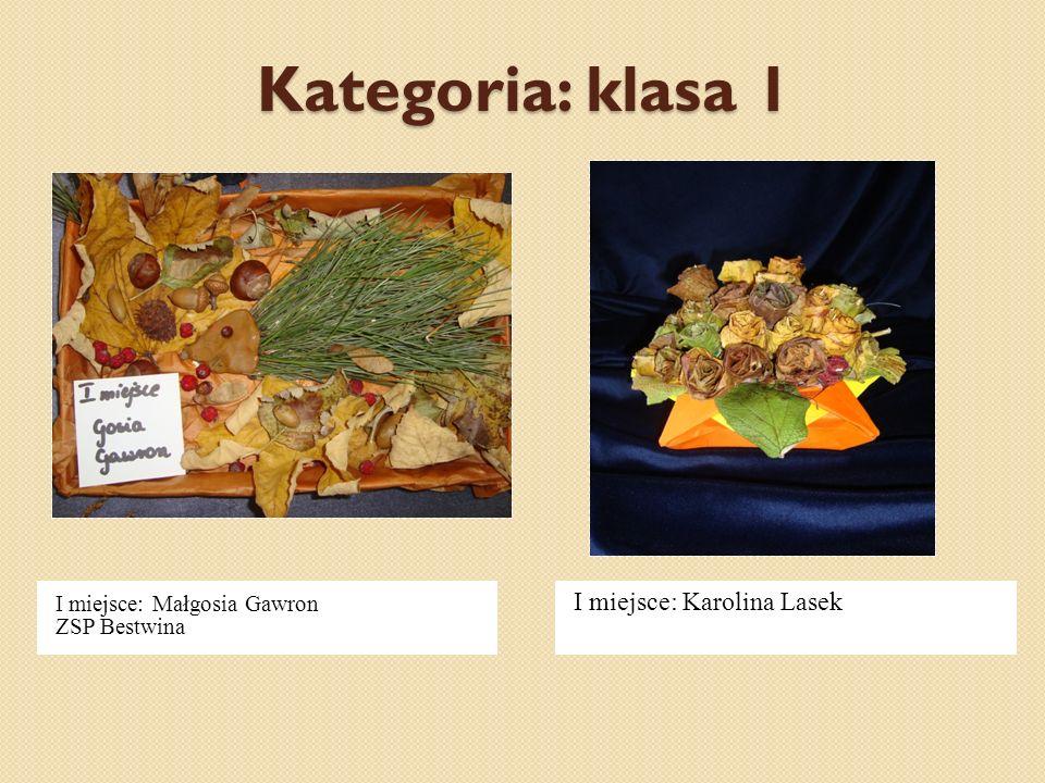 Kategoria: klasa 1 I miejsce: Karolina Lasek