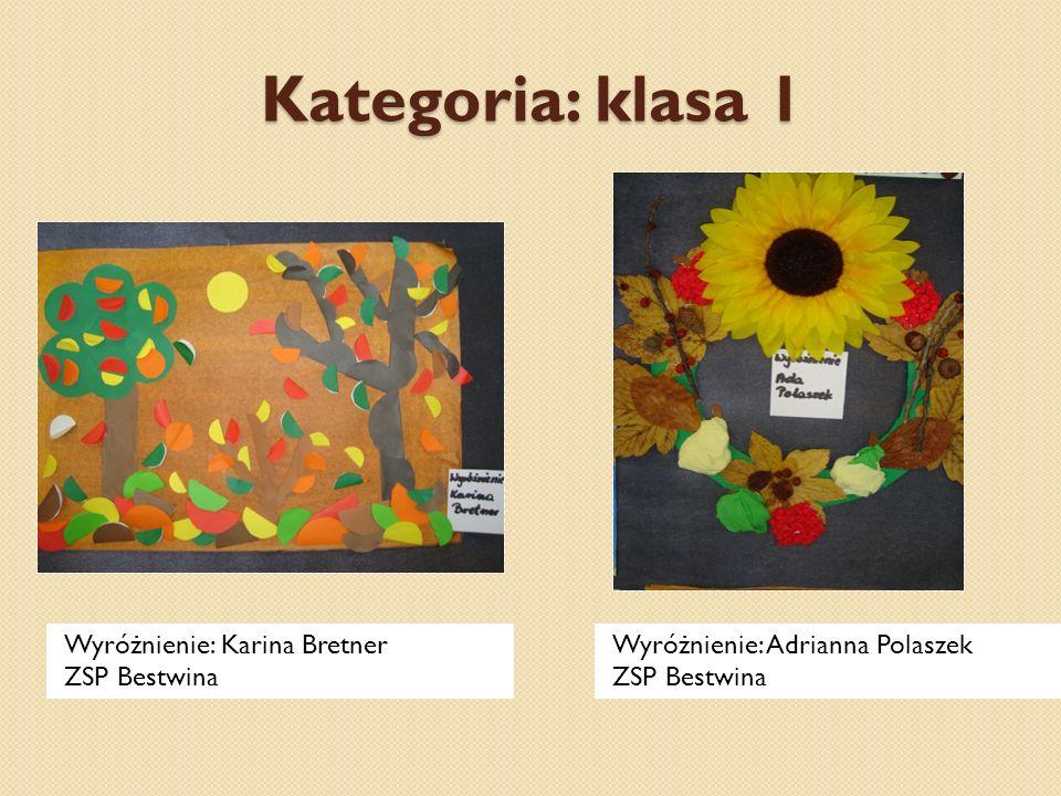 Kategoria: klasa 1 Wyróżnienie: Karina Bretner ZSP Bestwina