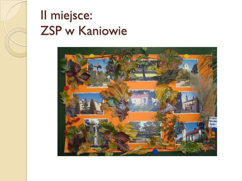 II miejsce: ZSP w Kaniowie