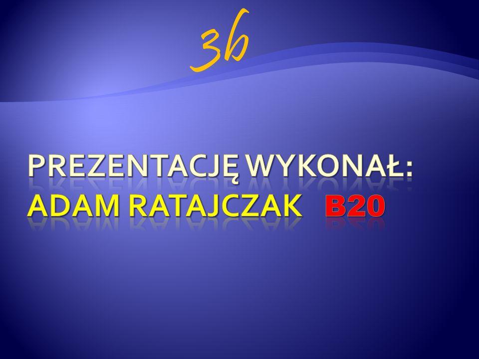 Prezentację wykonał: ADAM RATAJCZAK B20