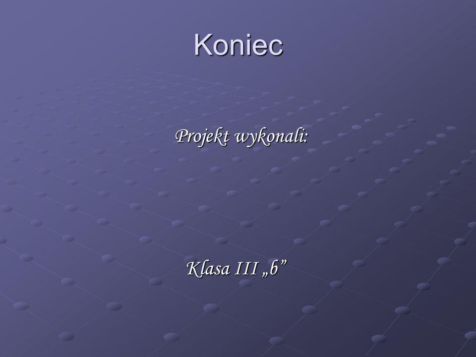 "Koniec Projekt wykonali: Klasa III ""b Tomasz Tynor Dawid Cygan"