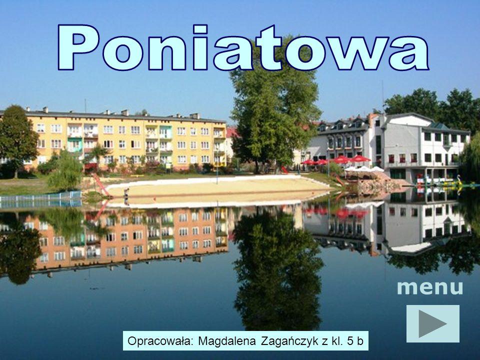 Poniatowa menu Opracowała: Magdalena Zagańczyk z kl. 5 b