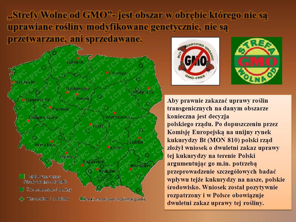"""""""Strefy Wolne od GMO - jest obszar w obrębie którego nie są uprawiane rośliny modyfikowane genetycznie, nie są przetwarzane, ani sprzedawane."""