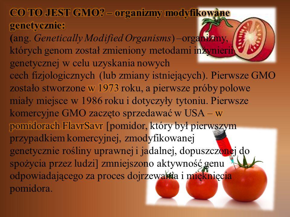 CO TO JEST GMO – organizmy modyfikowane genetycznie: