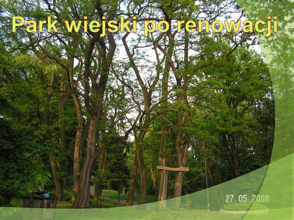 Park wiejski po renowacji