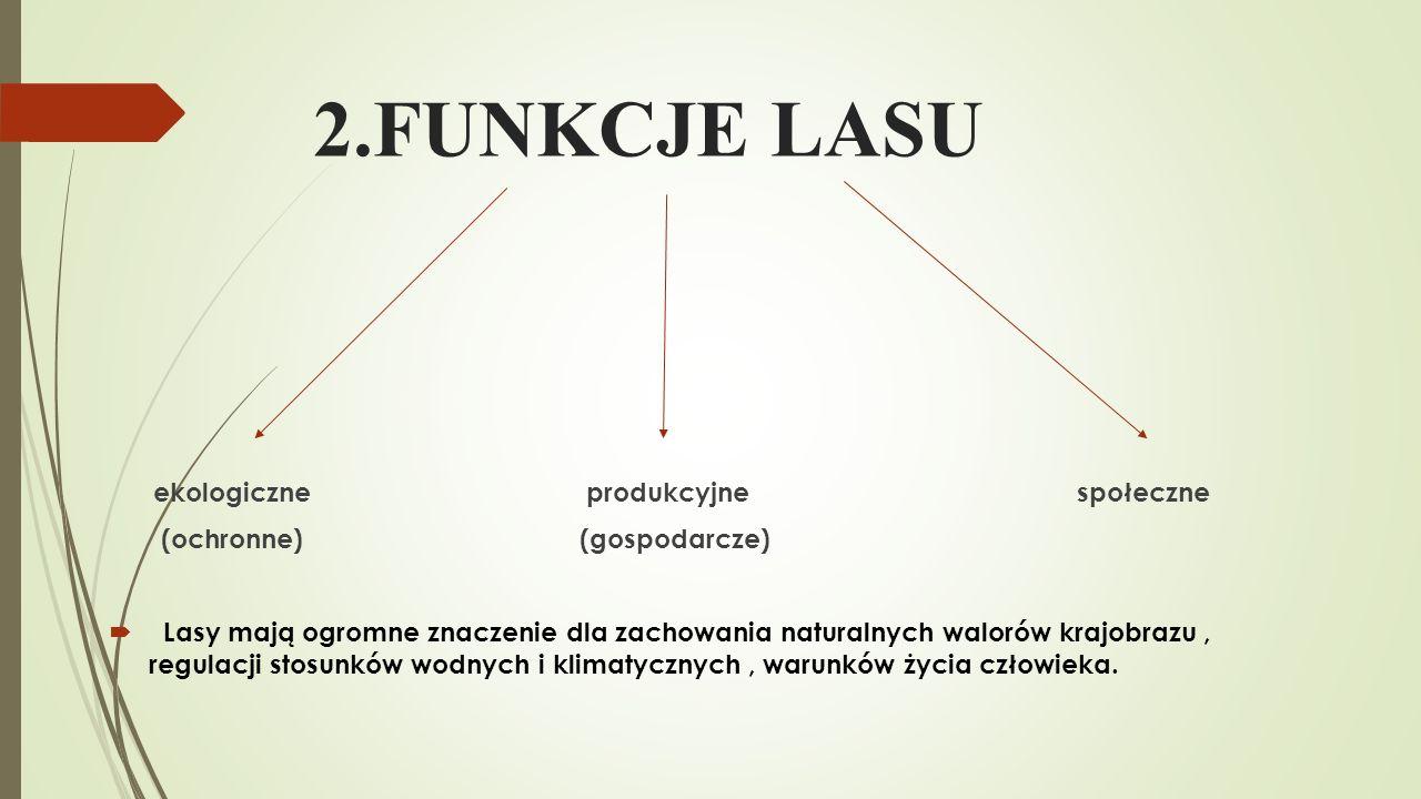 2.FUNKCJE LASU ekologiczne produkcyjne społeczne