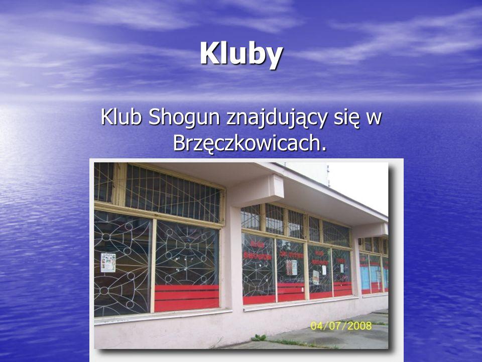 Klub Shogun znajdujący się w Brzęczkowicach.