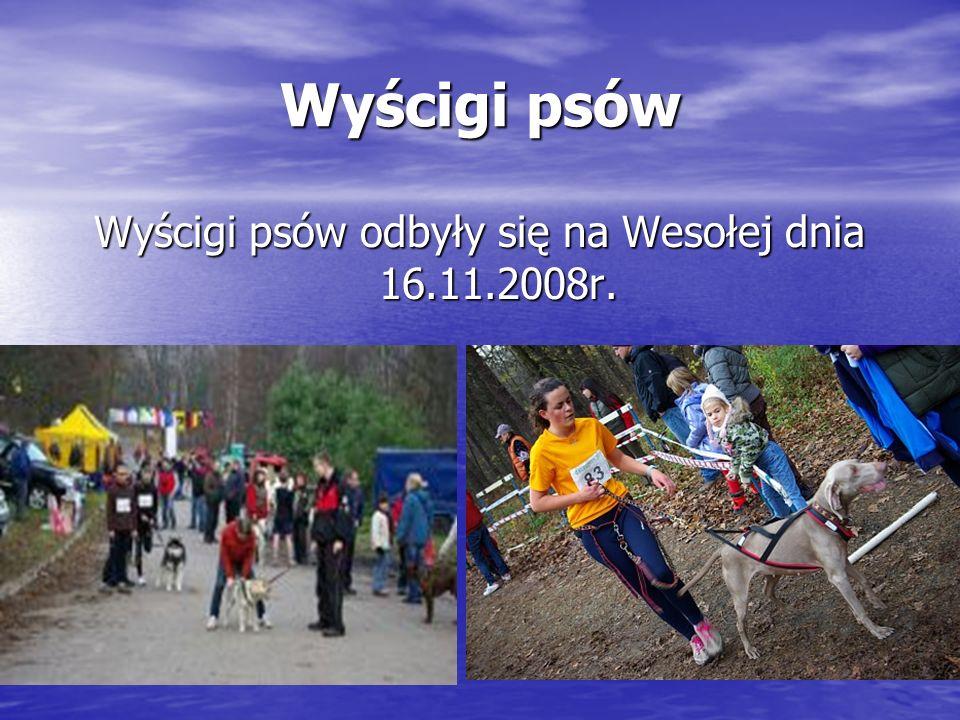 Wyścigi psów odbyły się na Wesołej dnia 16.11.2008r.