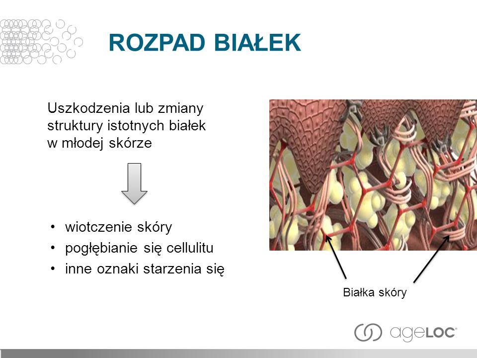 ROZPAD BIAŁEK Uszkodzenia lub zmiany struktury istotnych białek w młodej skórze. wiotczenie skóry.