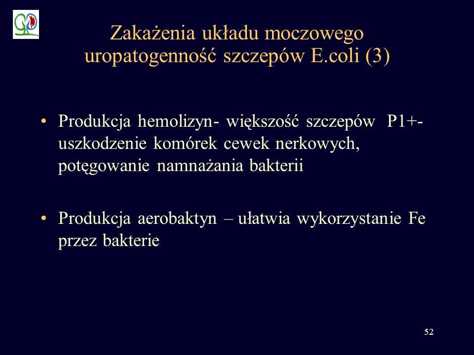 Zakażenia układu moczowego uropatogenność szczepów E.coli (3)
