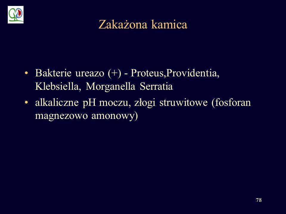 Zakażona kamica Bakterie ureazo (+) - Proteus,Providentia, Klebsiella, Morganella Serratia.