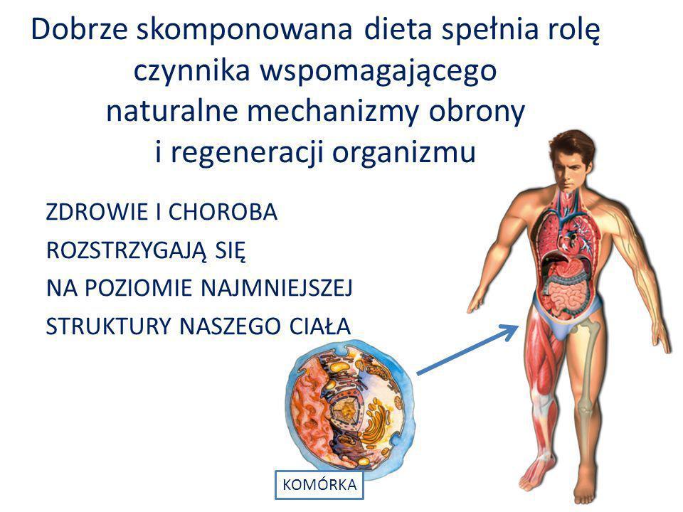 Dobrze skomponowana dieta spełnia rolę czynnika wspomagającego naturalne mechanizmy obrony i regeneracji organizmu
