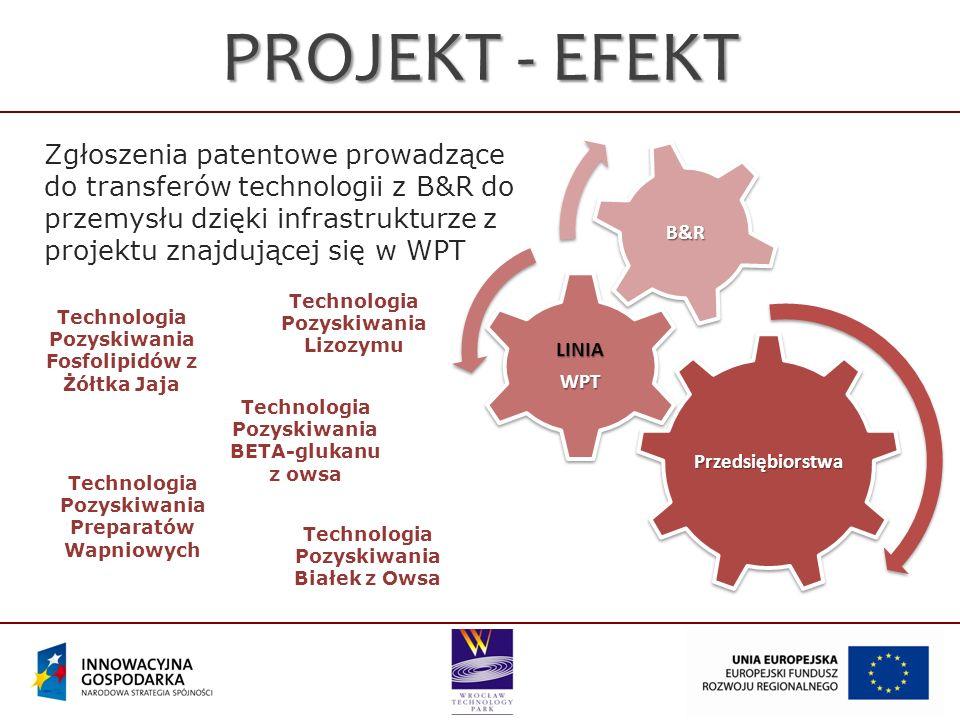 PROJEKT - EFEKT Przedsiębiorstwa. LINIA. WPT. B&R.