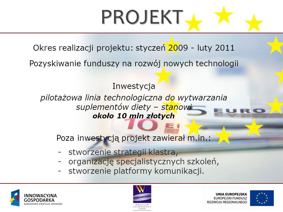 Okres realizacji projektu: styczeń 2009 - luty 2011