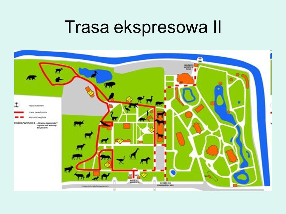 Trasa ekspresowa II