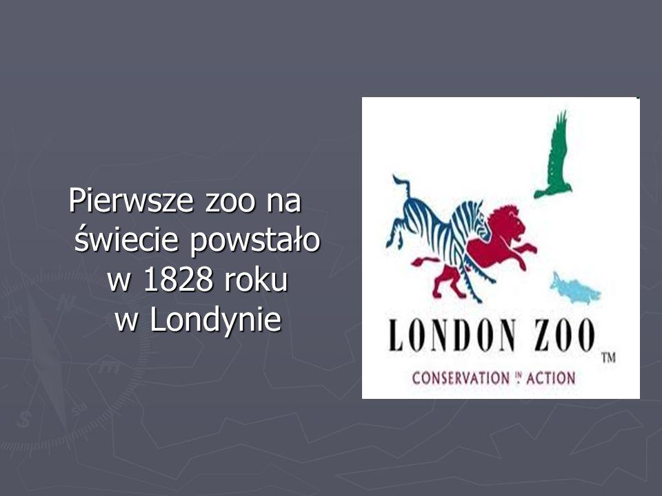 Pierwsze zoo na świecie powstało w 1828 roku w Londynie
