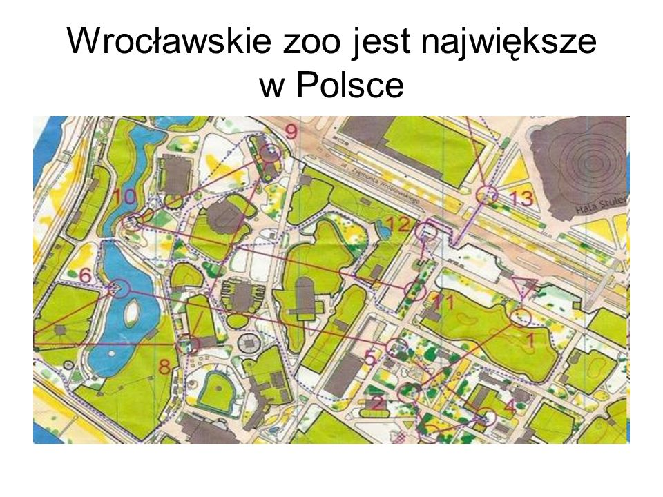 Wrocławskie zoo jest największe w Polsce
