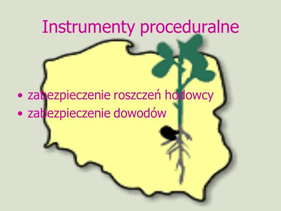Instrumenty proceduralne
