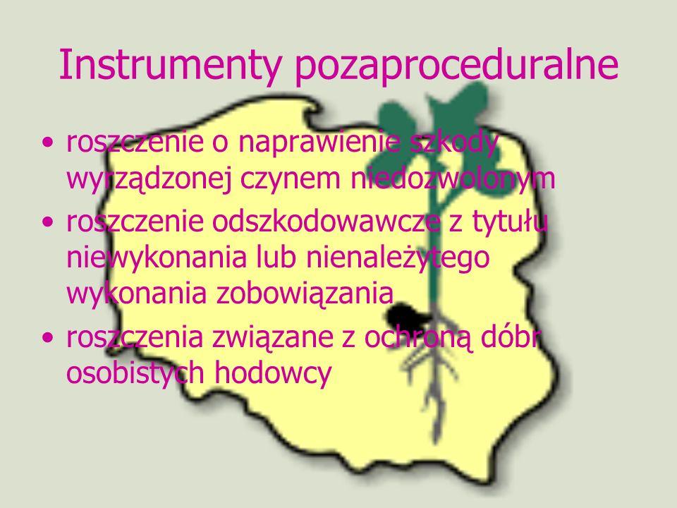 Instrumenty pozaproceduralne