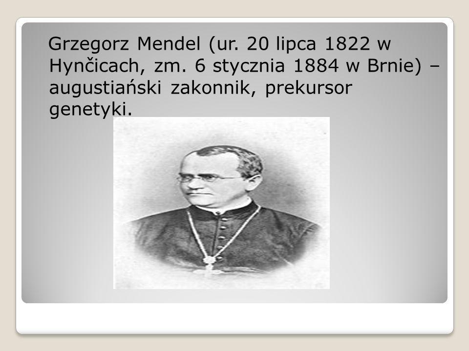 Grzegorz Mendel (ur. 20 lipca 1822 w Hynčicach, zm