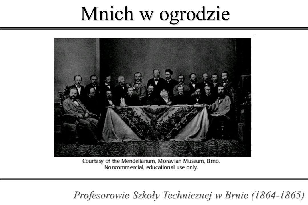 Mnich w ogrodzie Profesorowie Szkoły Technicznej w Brnie (1864-1865)