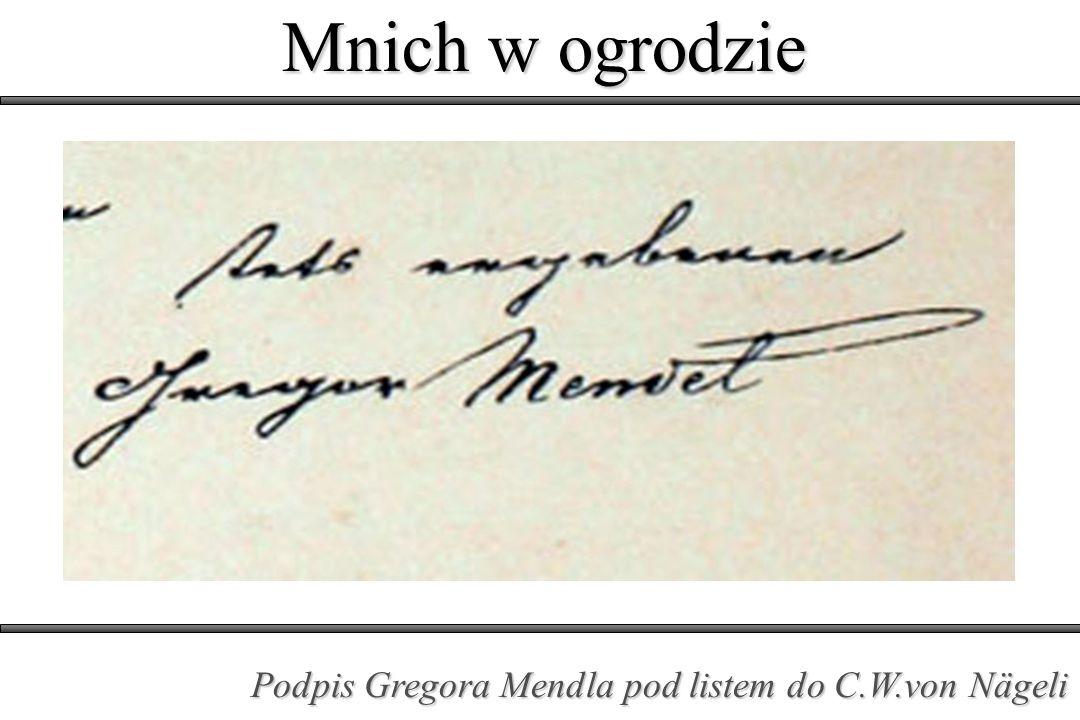 Mnich w ogrodzie Podpis Gregora Mendla pod listem do C.W.von Nägeli