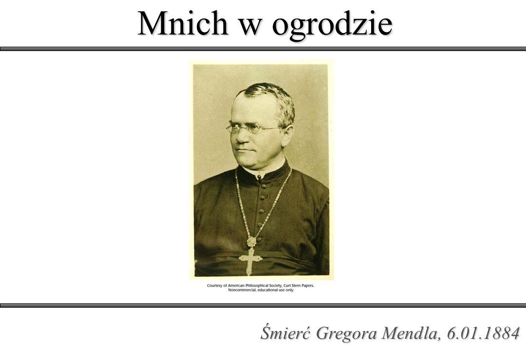 Mnich w ogrodzie Śmierć Gregora Mendla, 6.01.1884