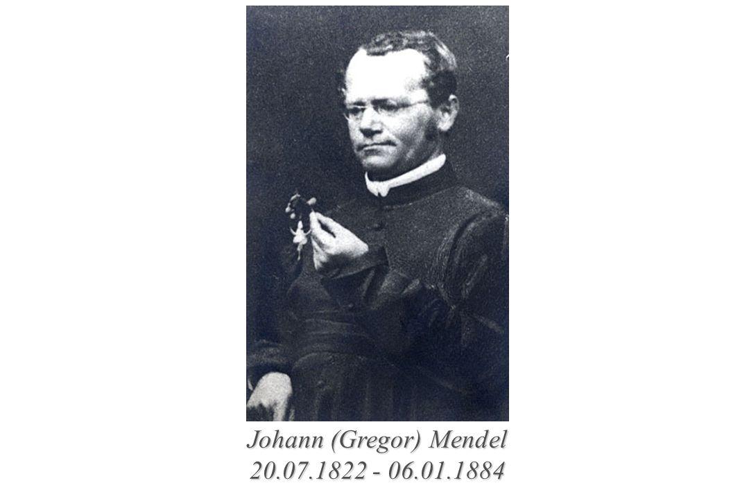 Johann (Gregor) Mendel 20.07.1822 - 06.01.1884